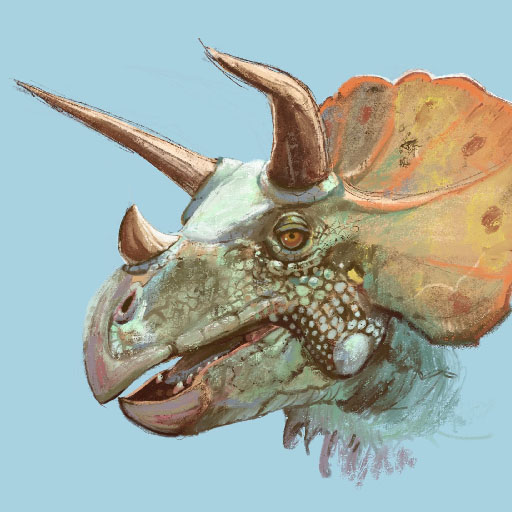 Triceratops Study